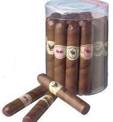1414-puros-de-chocolate-display-de-20-unidades